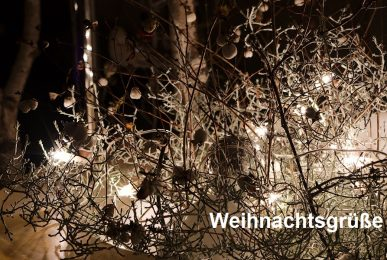 Just-take-a-look.berlin - Weihnachtsgrüße