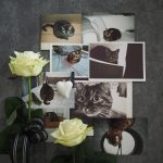 Just-take-a-look.berlin - Fashioncat Giulia