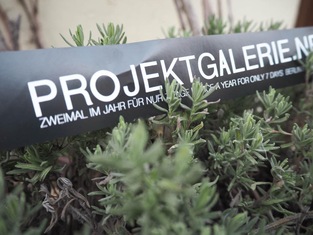 Designer Fashion in der Projekt Galerie