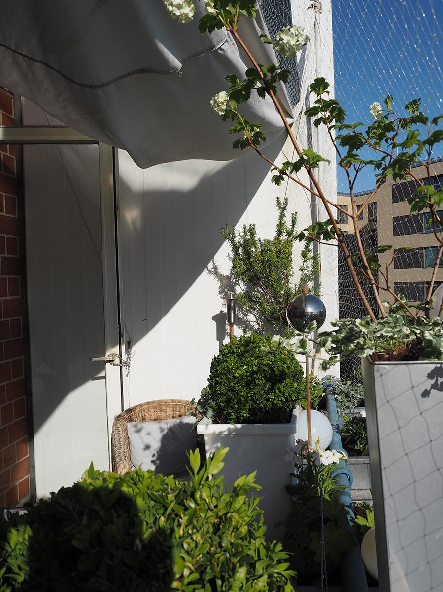 Sommerzimmer - Balkon 14